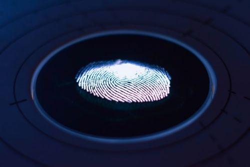 Fingerprint Evidence Unde…